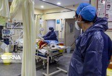 تصویر از سخنگوی وزارت بهداشت اعلام کرد؛ آمار مبتلایان کرونا تا روز شنبه پنجم مهر ماه/ مبتلایان جدید ۳۲۰۴ و فوتیها ۱۷۲ نفر+جزئیات