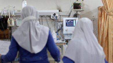 تصویر از مدیریت دانشجویی سازمان نظام پرستاری کشور برگزار میکند